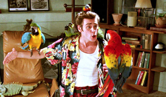 ace-ventura-jim-carrey