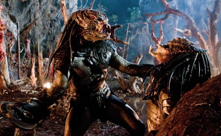 13. predators