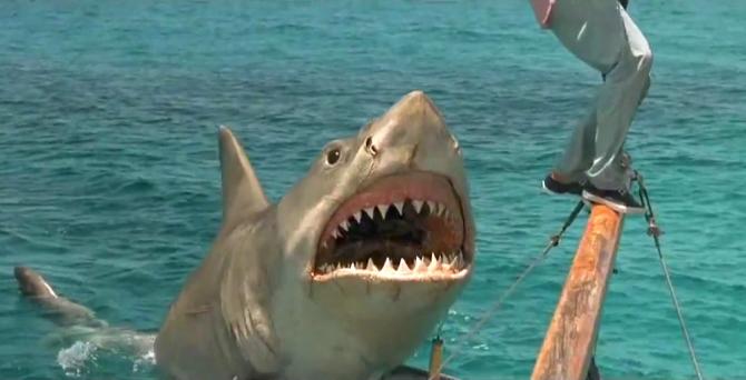 5. jaws the revenge