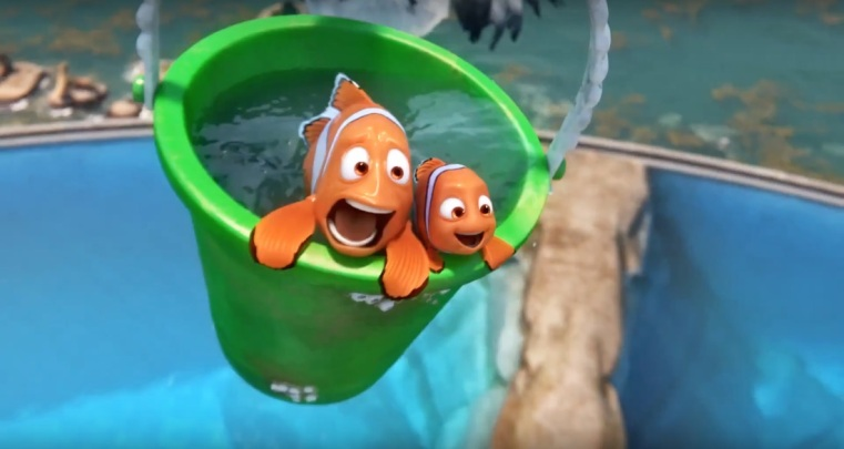 35. Finding Dory
