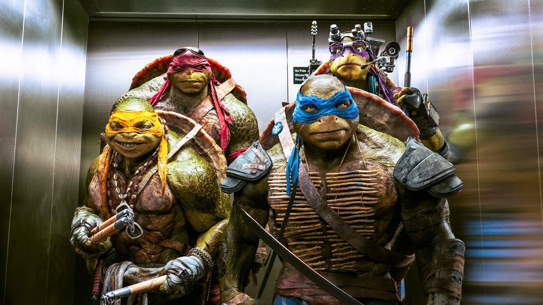 6. Teenage Mutant Ninja Turtles