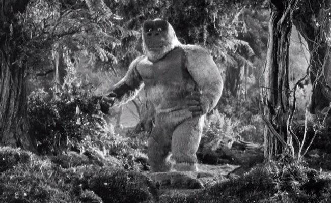 3. Son of Kong